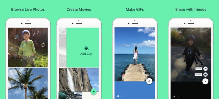 Google S Motion Stills App Turns Apple Live Photos Into Animated Gifs And Videos Live Photo Amazing Gifs New Ios