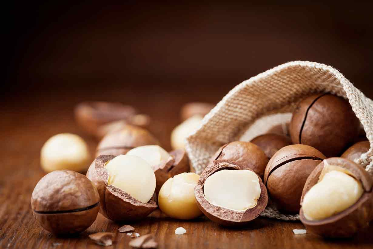 Are Macadamia Nuts Good For You Macadamia Nuts Chocolate Covered Nuts Chocolate Macadamia Nuts
