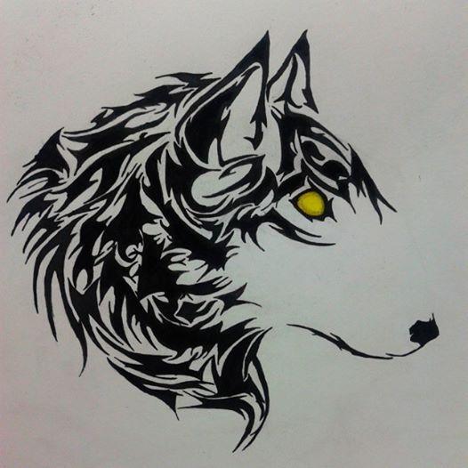 رسم ذئب عبد الرحمن أمير Doodle Wolf Watercolor Art Drawings Art