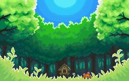 Ilex Forest Pokemon
