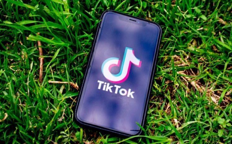 Tiktok Business Model Business Model Investing