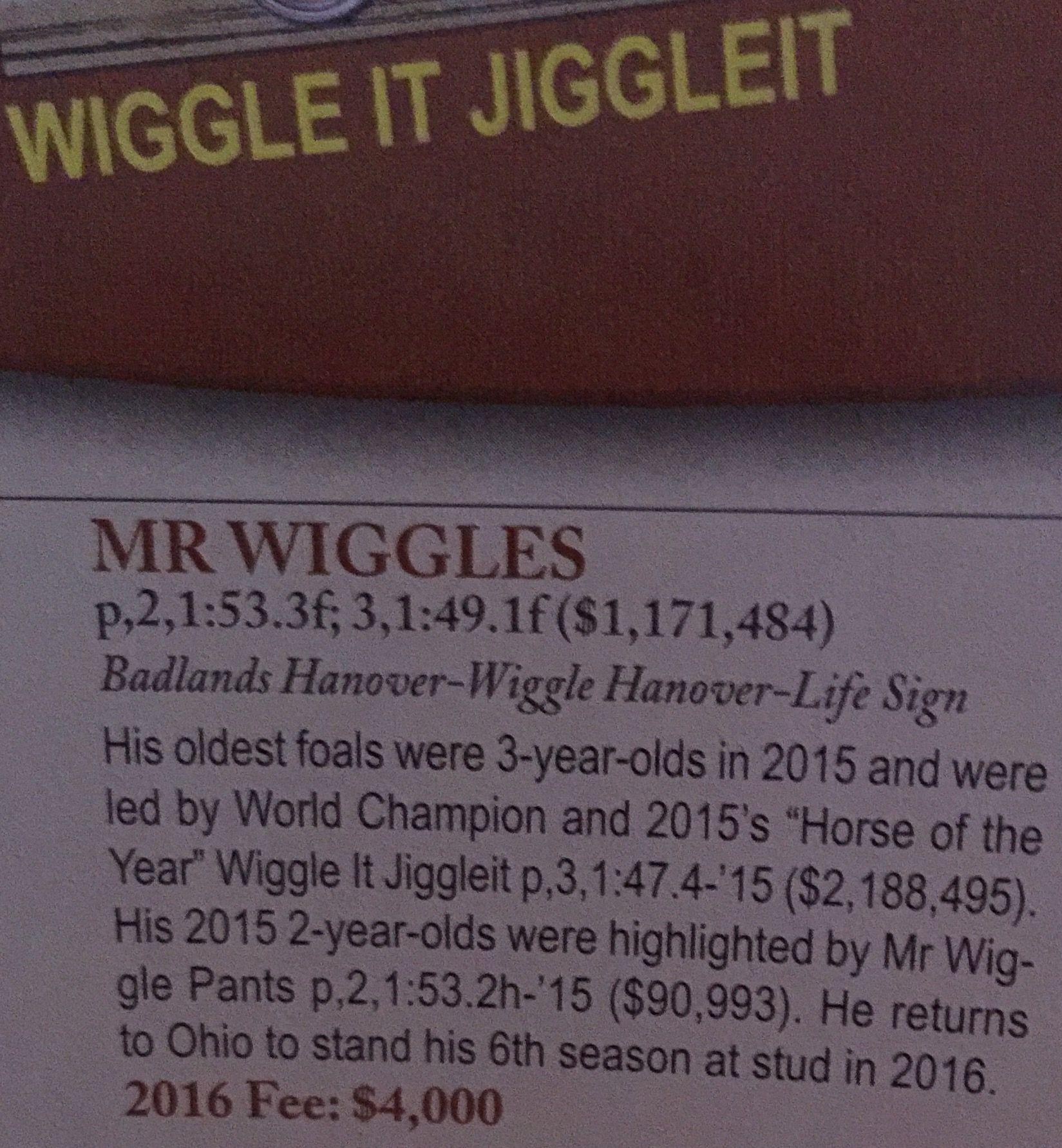WiggleItJiggleIt