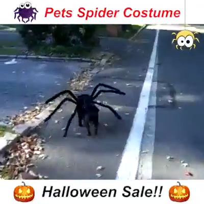 Halloween Party Horror Spider Costume for Pets #giftsforcats