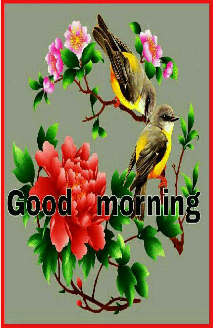 Good Morning Saved By Sriram Good Morning All Wishes Good