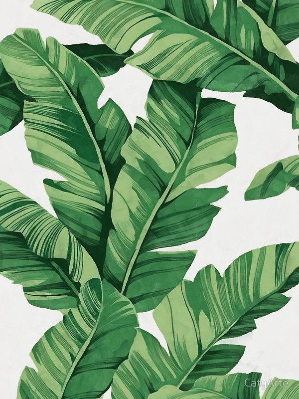 Tropical banana leaves Canvas Print by CatyArte