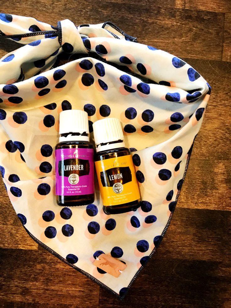 Fresh pet spray essential oils dogs essential oils for