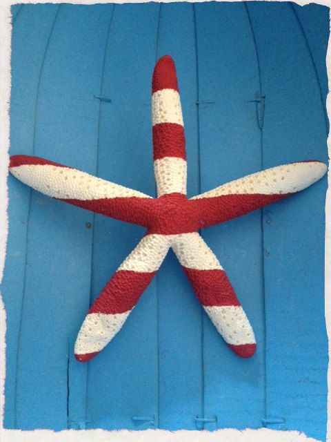 Nautical Striped Starfish van woodandrope op Etsy Christmas beach