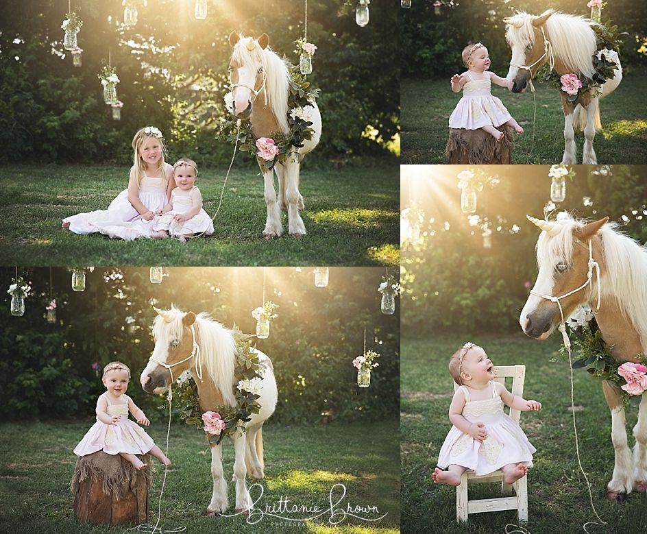 Unicorn Mini Sessions Located In Georgetown Ky Safe Haven