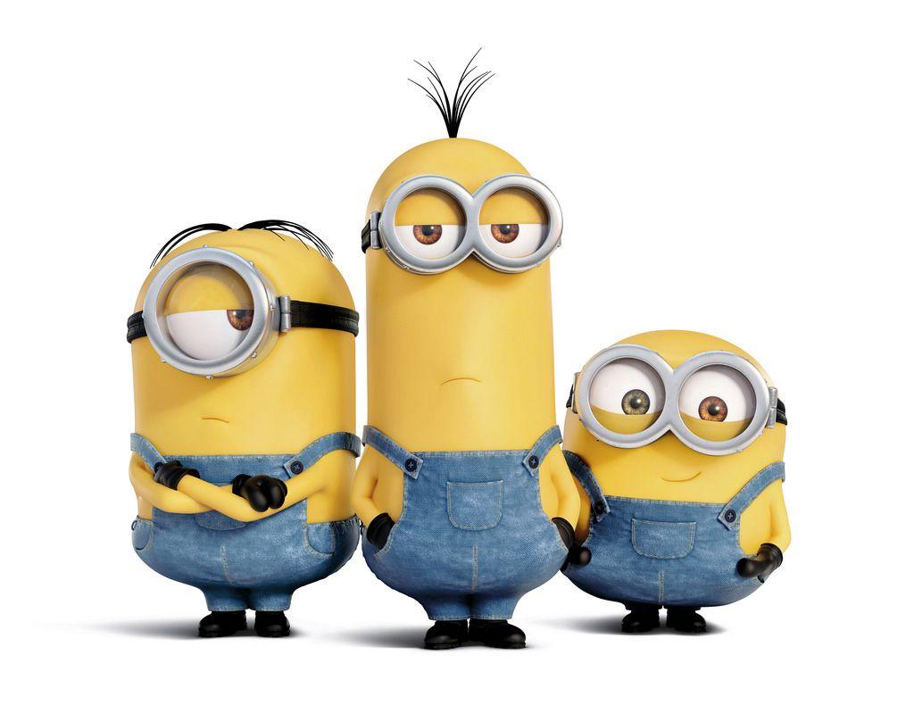 Stuart, Kevin & Bob