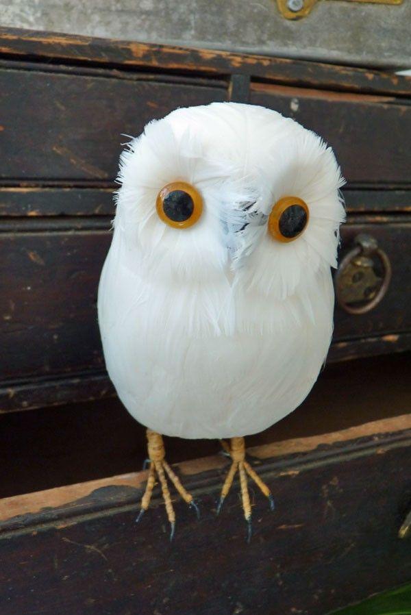 Little Artificial Owl Decoration