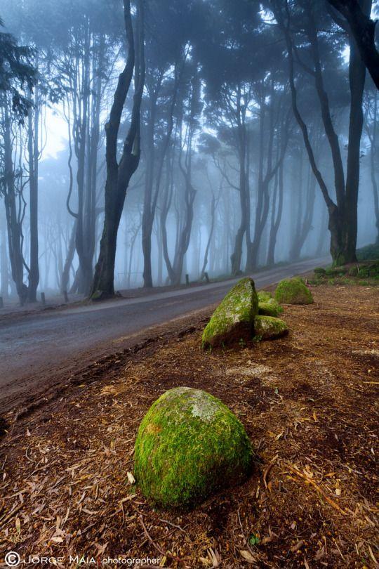 Green and Blue by Jorge Maia on 500px Photographer: Jorge Maia, Lisboa, Portugal