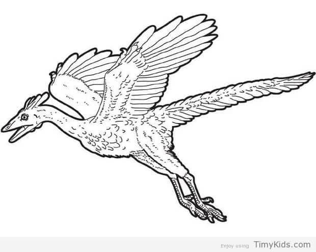 flying dinosaur coloring pages in 2019 | Dinosaur coloring ...