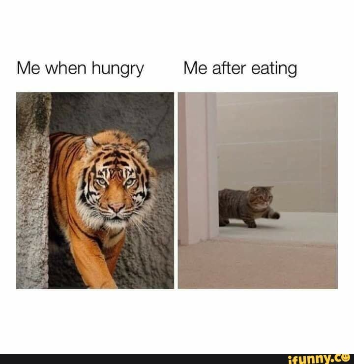 Me when hungry Me after eating - )