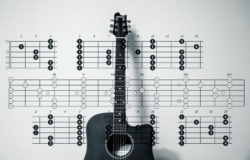 6 Common Facts For Acoustic Guitar That You Never Heard Of Acoustic Guitar Martin Guitar Music Courses
