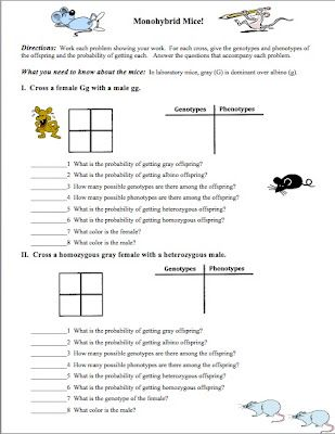 Need An Introductory Genetics Worksheet? | Science Ideas