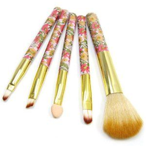 colorful lovely professiona 5 piece makeup brush set with