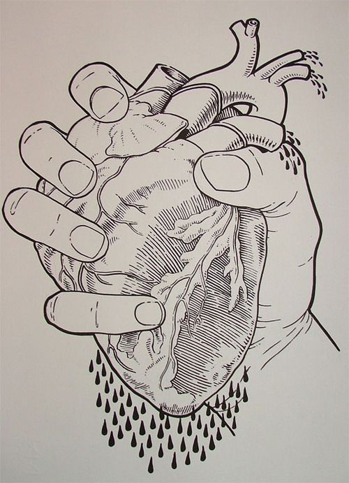 Squeezed Heart Drawing Anatomy Art Sketches