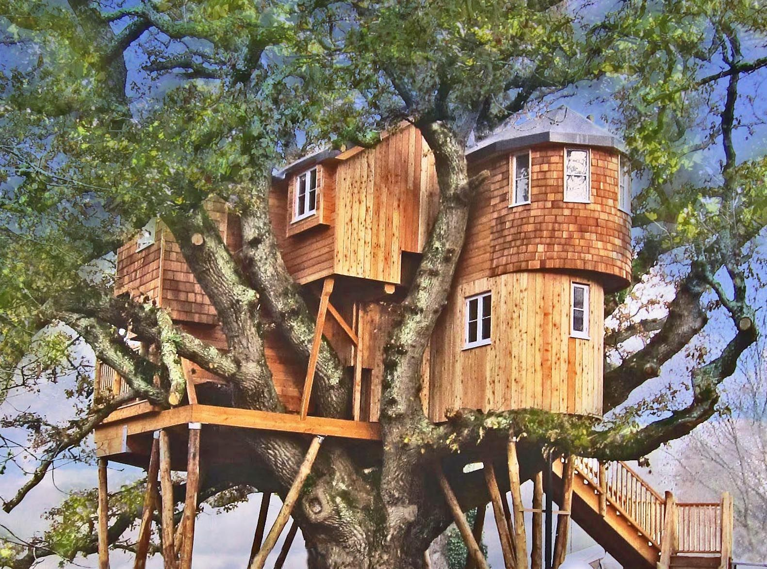 how about staying in these spectacular treehouses tree - Treehouse Masters Irish Cottage