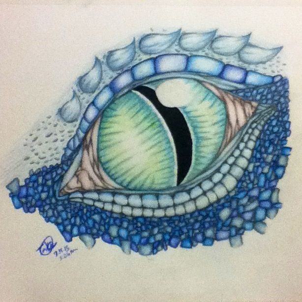 dragon drawings in color dragon eye color drawing by