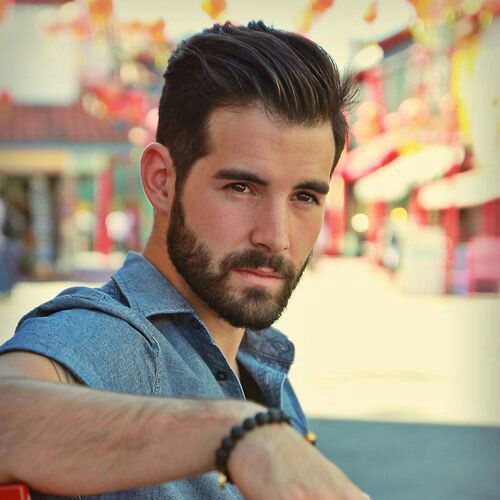 Frat Haircuts Fade With Brush Back Beard Hairstyle Beard Styles For Men Haircuts For Men