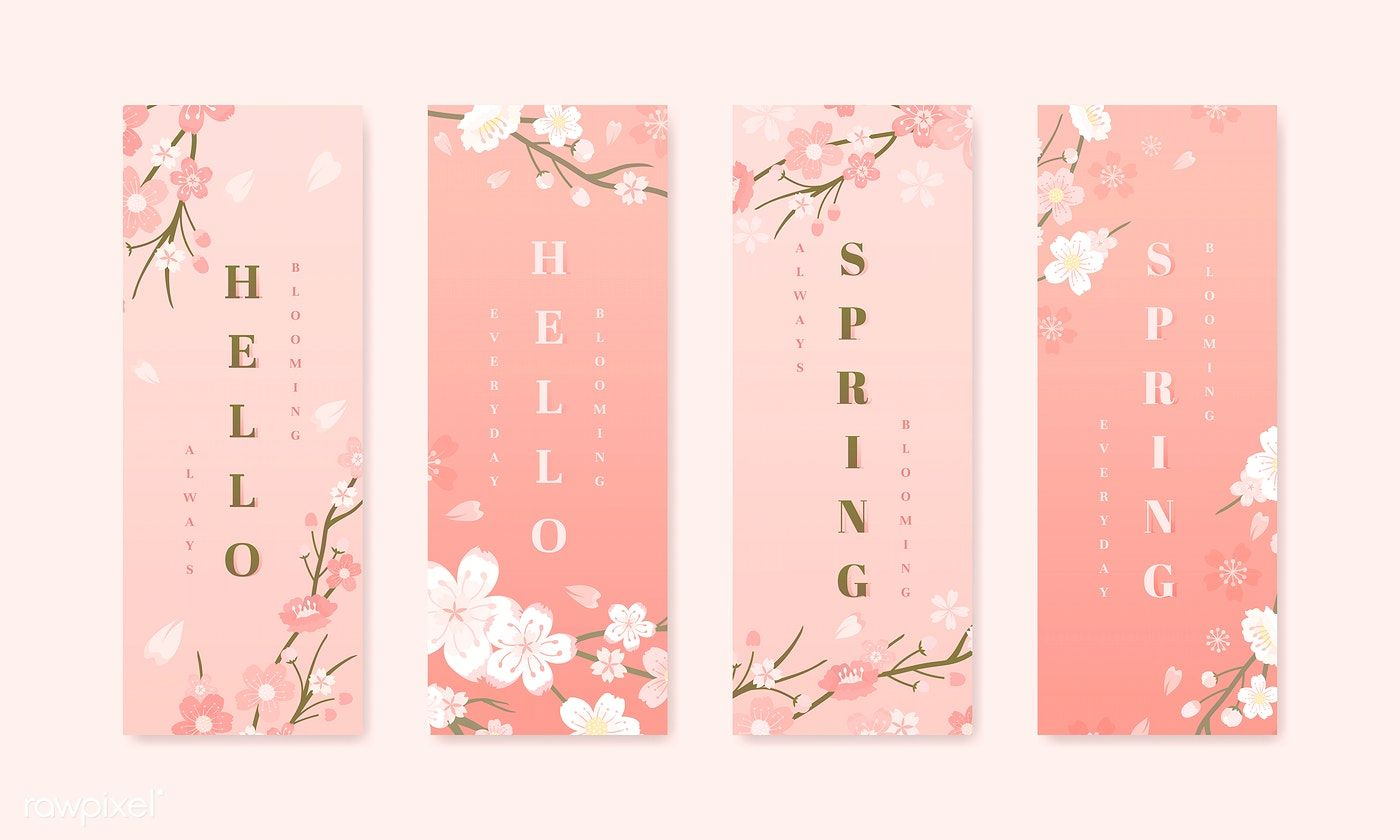 Pink Cherry Blossom Banner Vector Free Image By Rawpixel Com