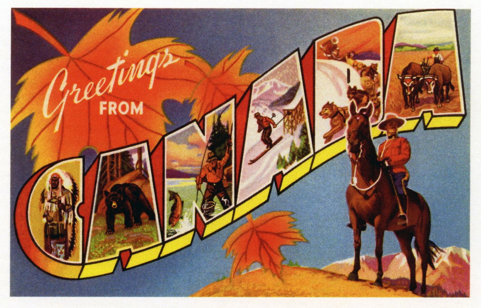 Greetings from canada postcard vintage postcards