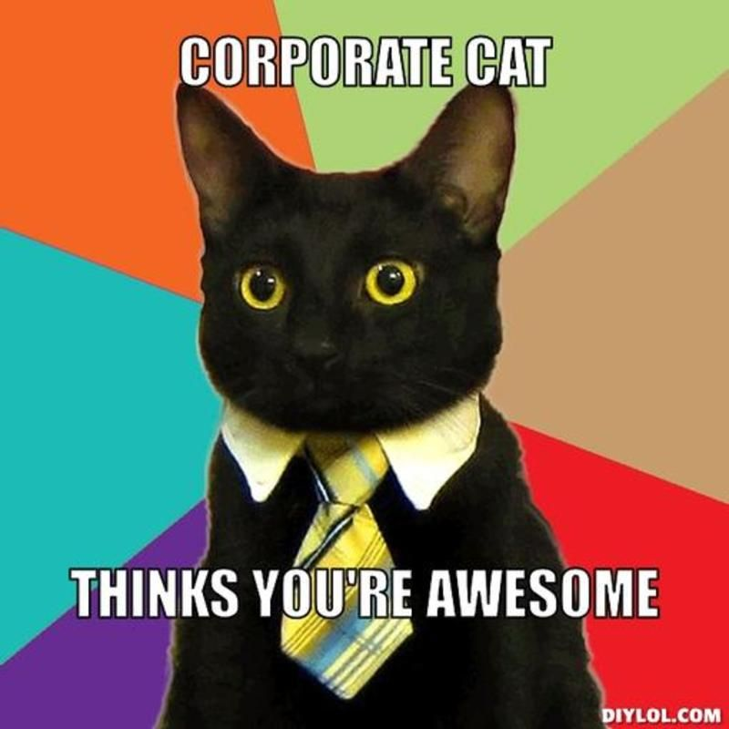You Re Awesome Funny Memes : Resized business cat meme generator corporate thinks