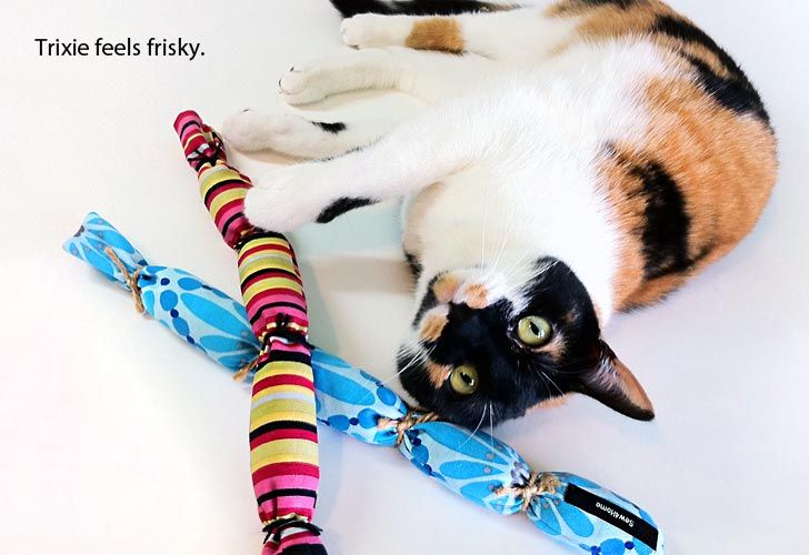 Cattail catnip toy long tails are made with decor weight fabric stuffed with catnip and tied - Juguetes caseros para conejos ...