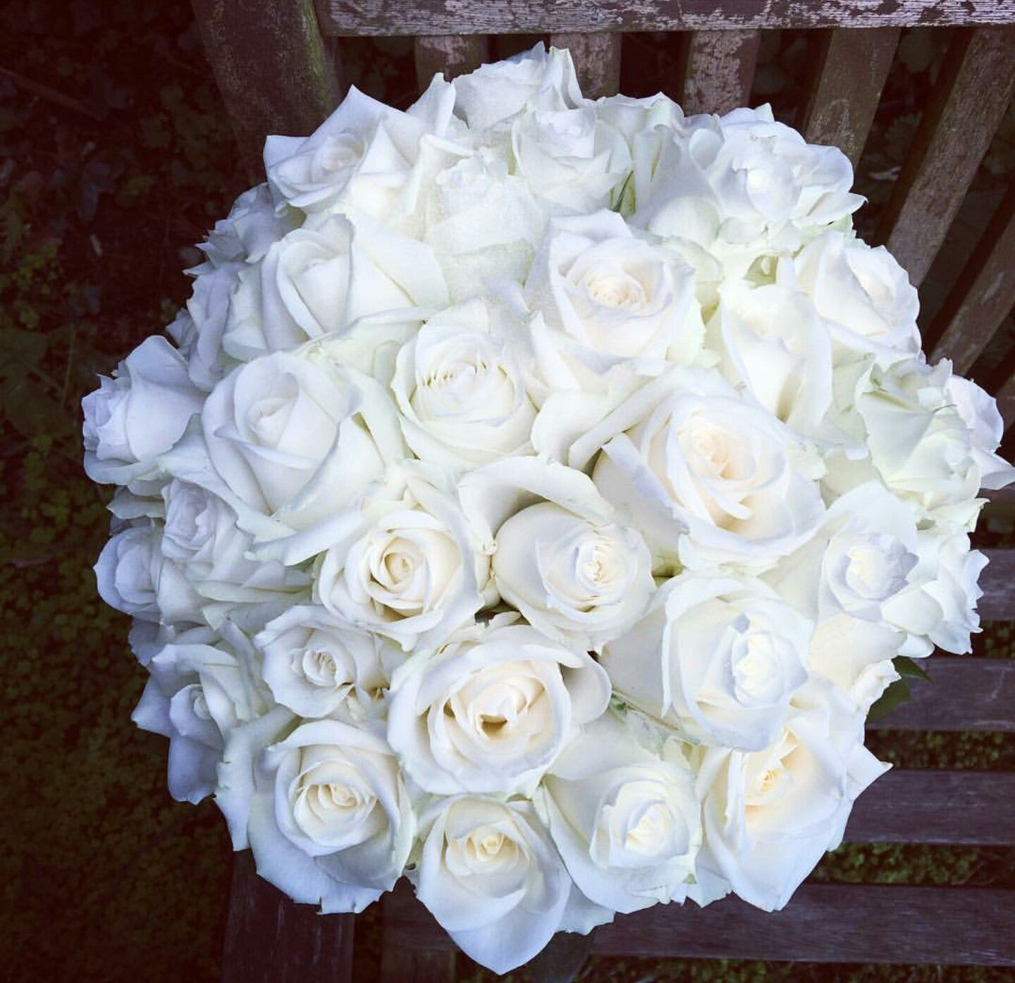 Elegant Round Wedding Bouquet Of Creamy White Roses Spray