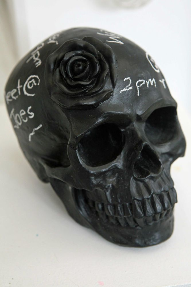 chalkboard skull, taxidermy, desk accessories, office decor skull