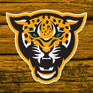 Sports Mascots Animal Logo Cheetah Logo Sports Logo