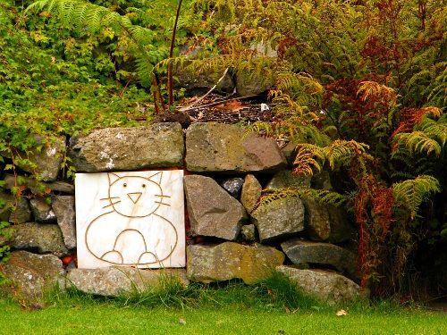Belfast Castle Cats