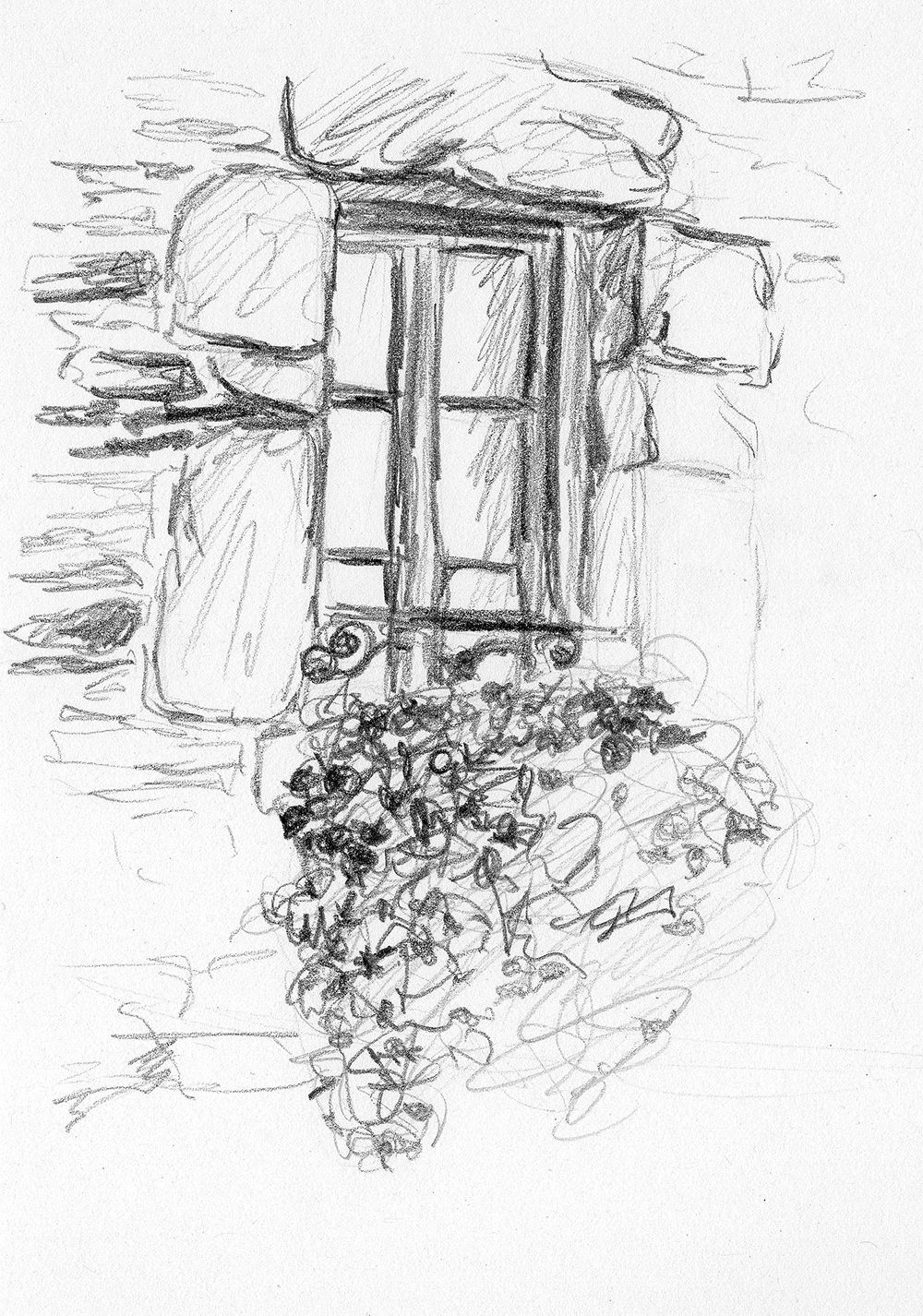Quick Sketch of a pretty window with flowers