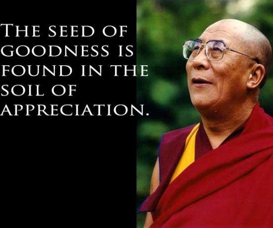 appreciation | Appreciation quotes, Dalai lama quotes, Dalai lama