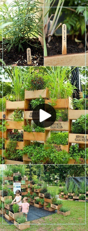 Pin Auf Essbarer Garten