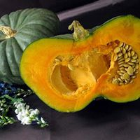 Image result for australian queensland blue squash