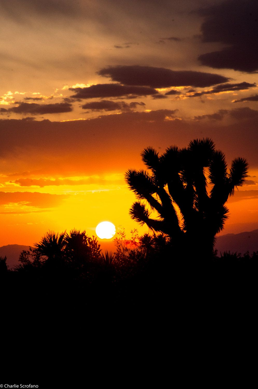 Landscape Photography Desert Sunset