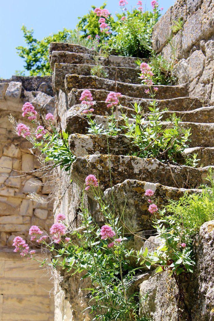 escaliers fleuris proven aux escaliers fleurs printemps provence sud france paysage. Black Bedroom Furniture Sets. Home Design Ideas