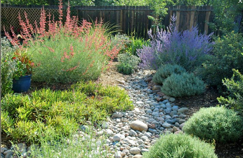 Dry riverbed design. | Dry riverbed landscaping, Xeriscape ...
