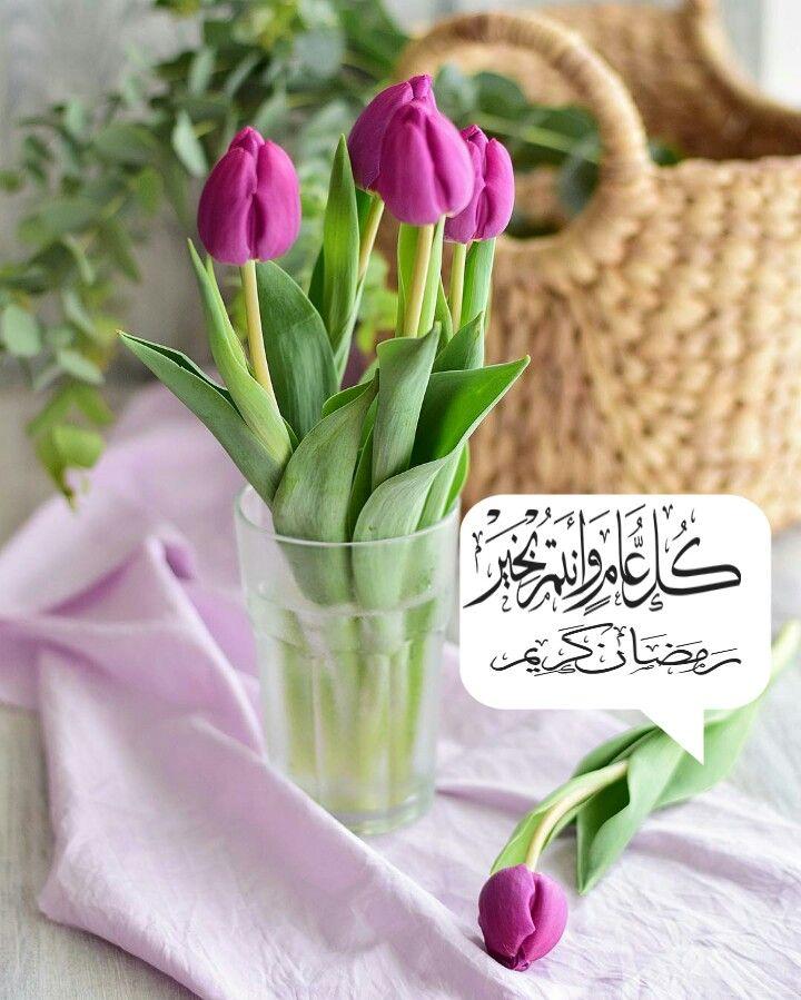 كل عام وانتم بخير رمضان كريم Purple Tulips Tulips Flowers
