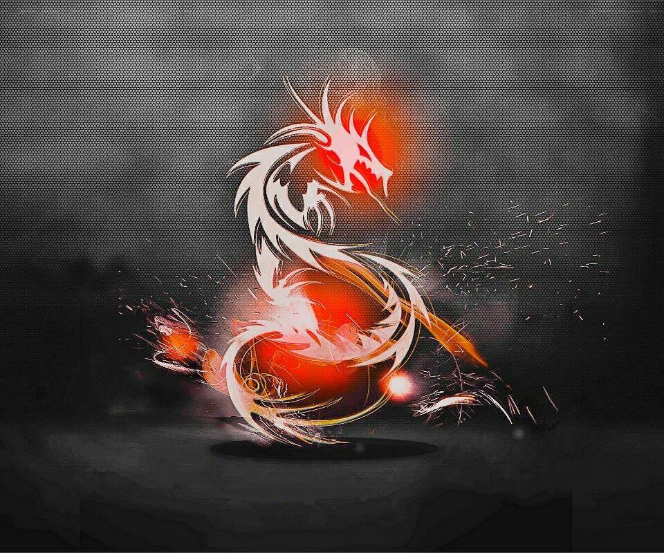 Dragon Pictures, Wallpaper, Dragon