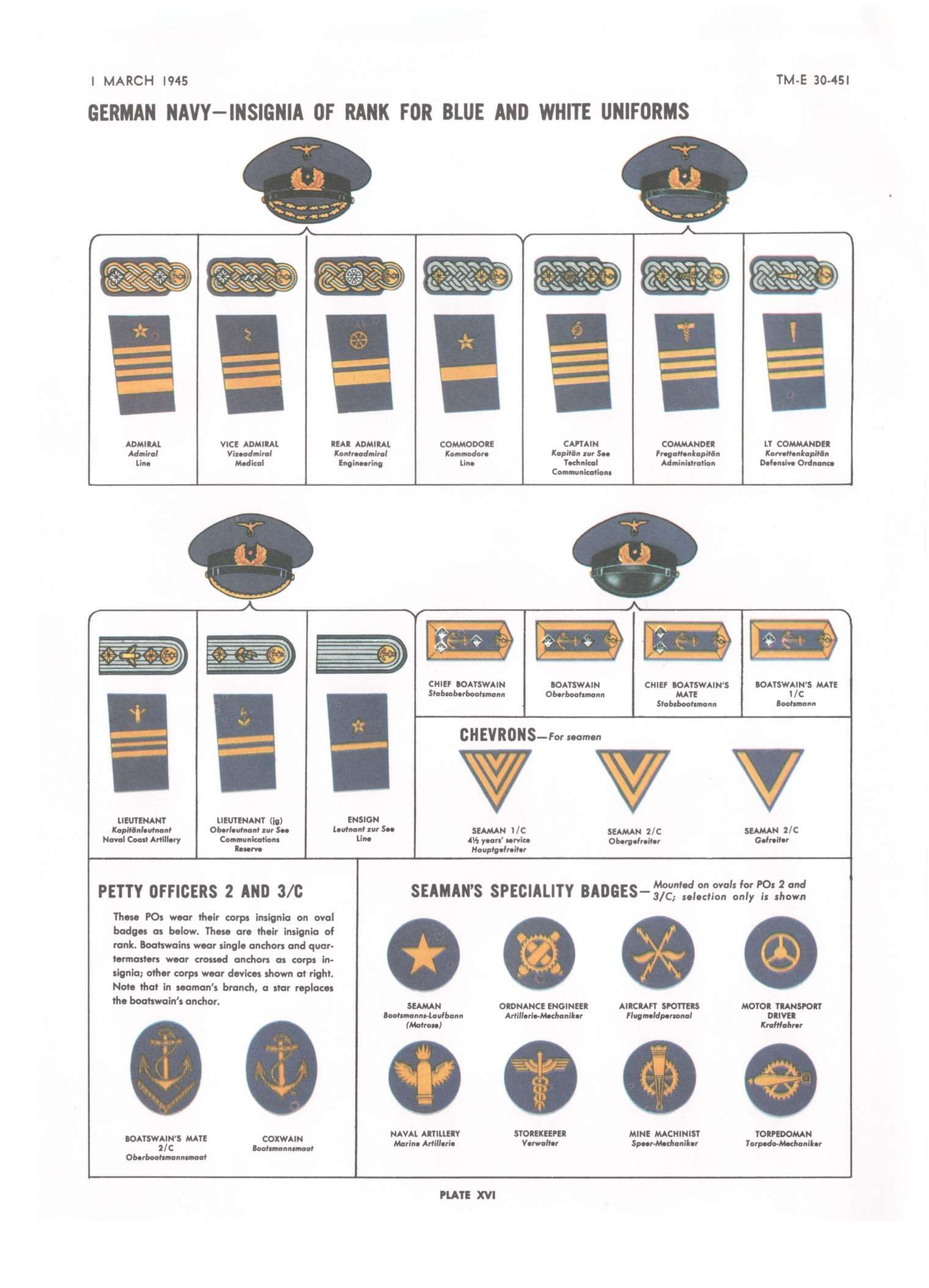 Army Rank Insignia Chart Heartpulsar