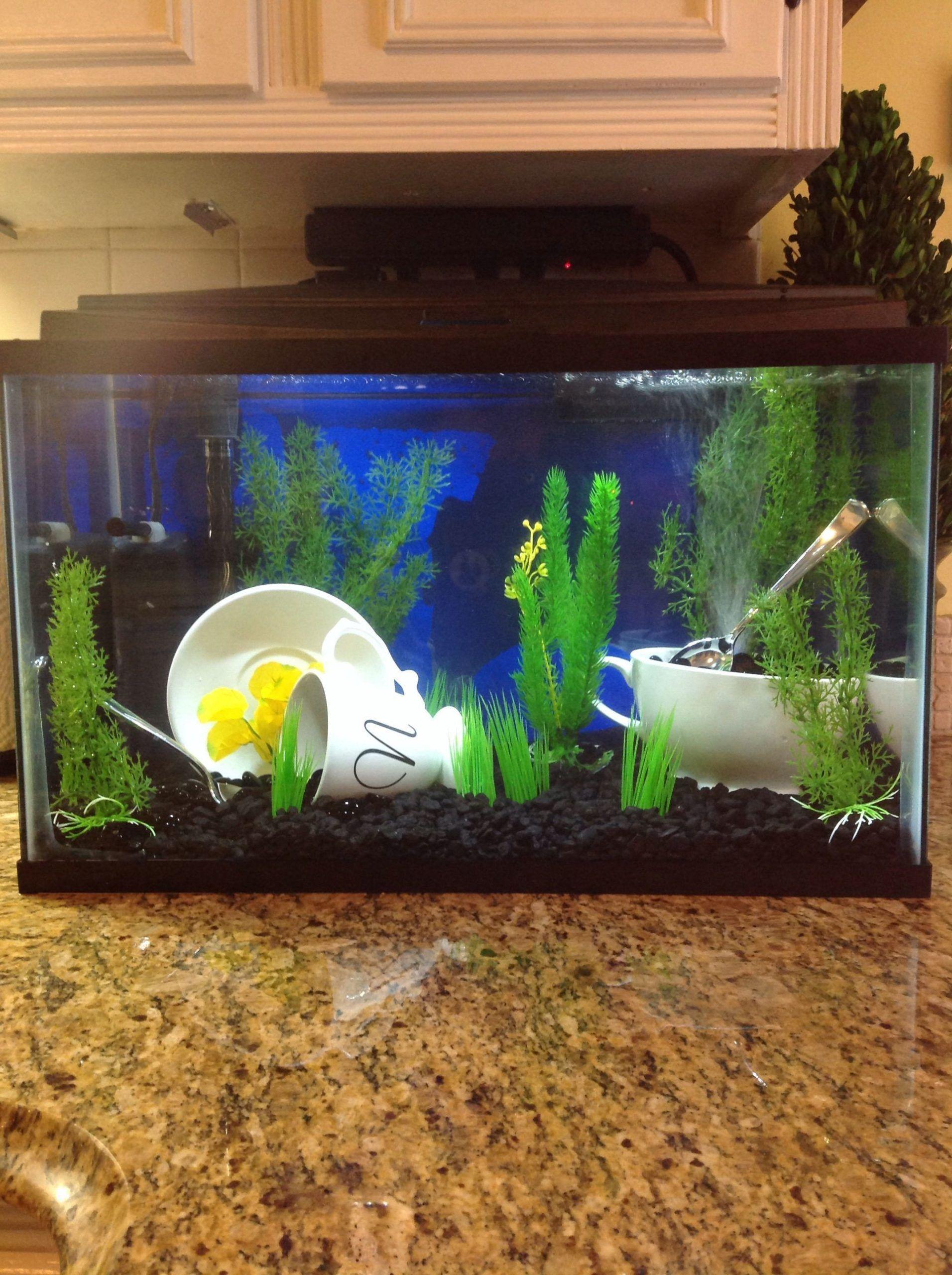 Ich Teile Mein Neues Aquarium Mit Kaffeethema Das Sich In Meiner Kuche Befindet Luftblasen In 2020 Fish Tank Bubbler Kitchen Themes