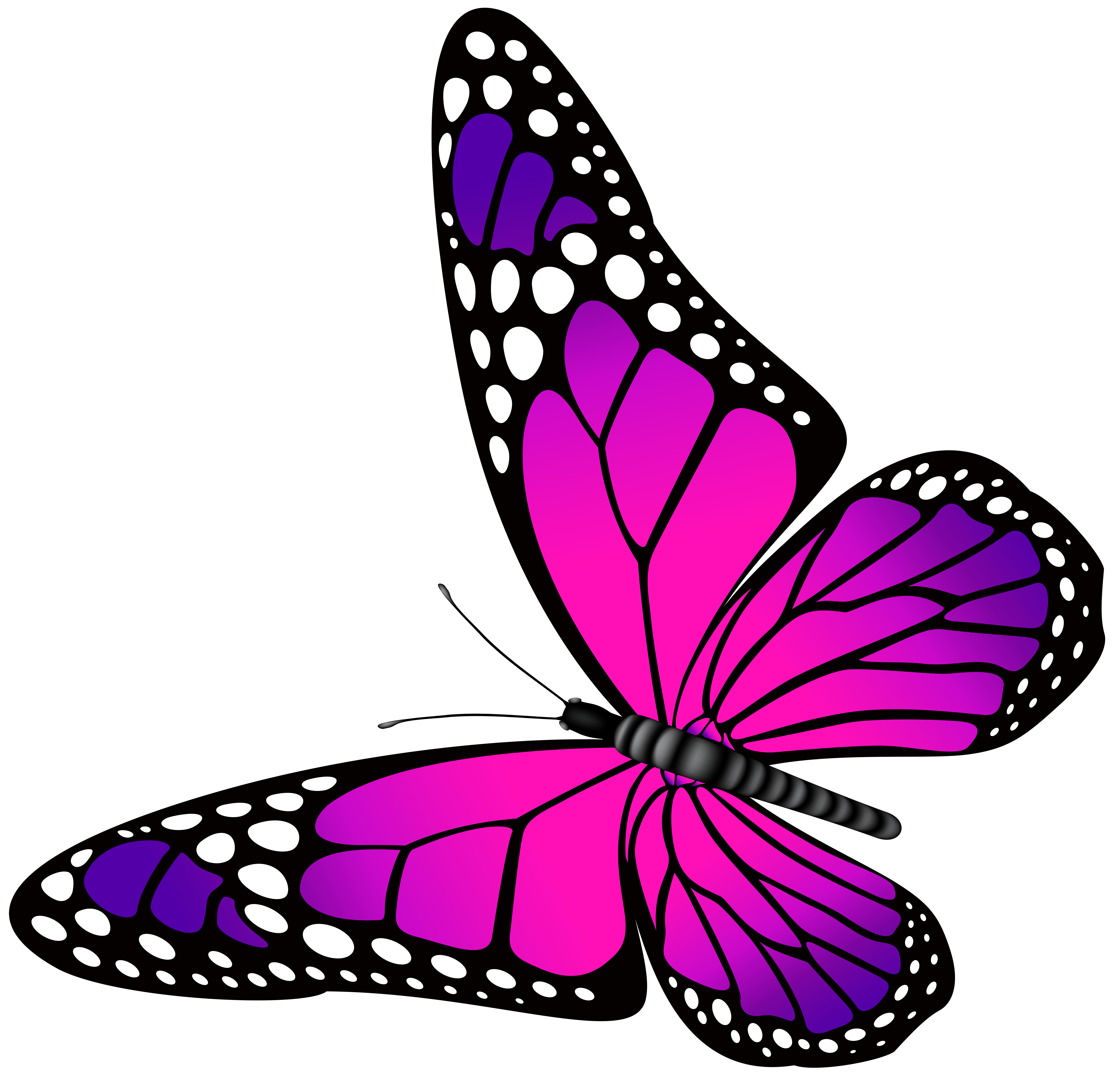 Butterfly Pink And Purple Transparent Png Clip Art Image Butterfly Painting Butterfly Watercolor Butterfly Art