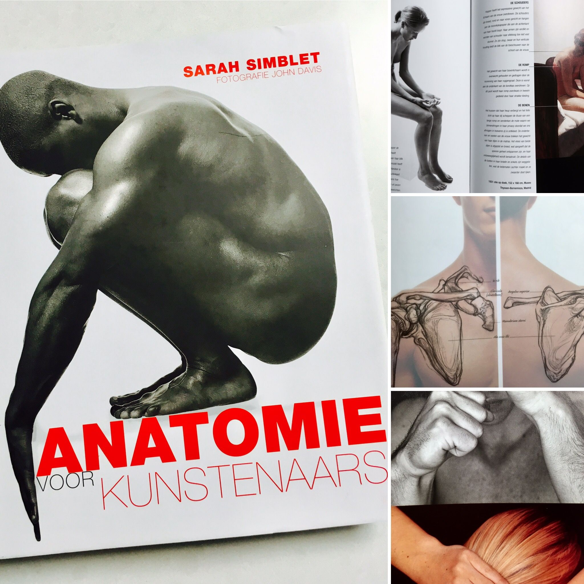 Anatomy for the artist by Sarah Simblet - a must-have book for ...