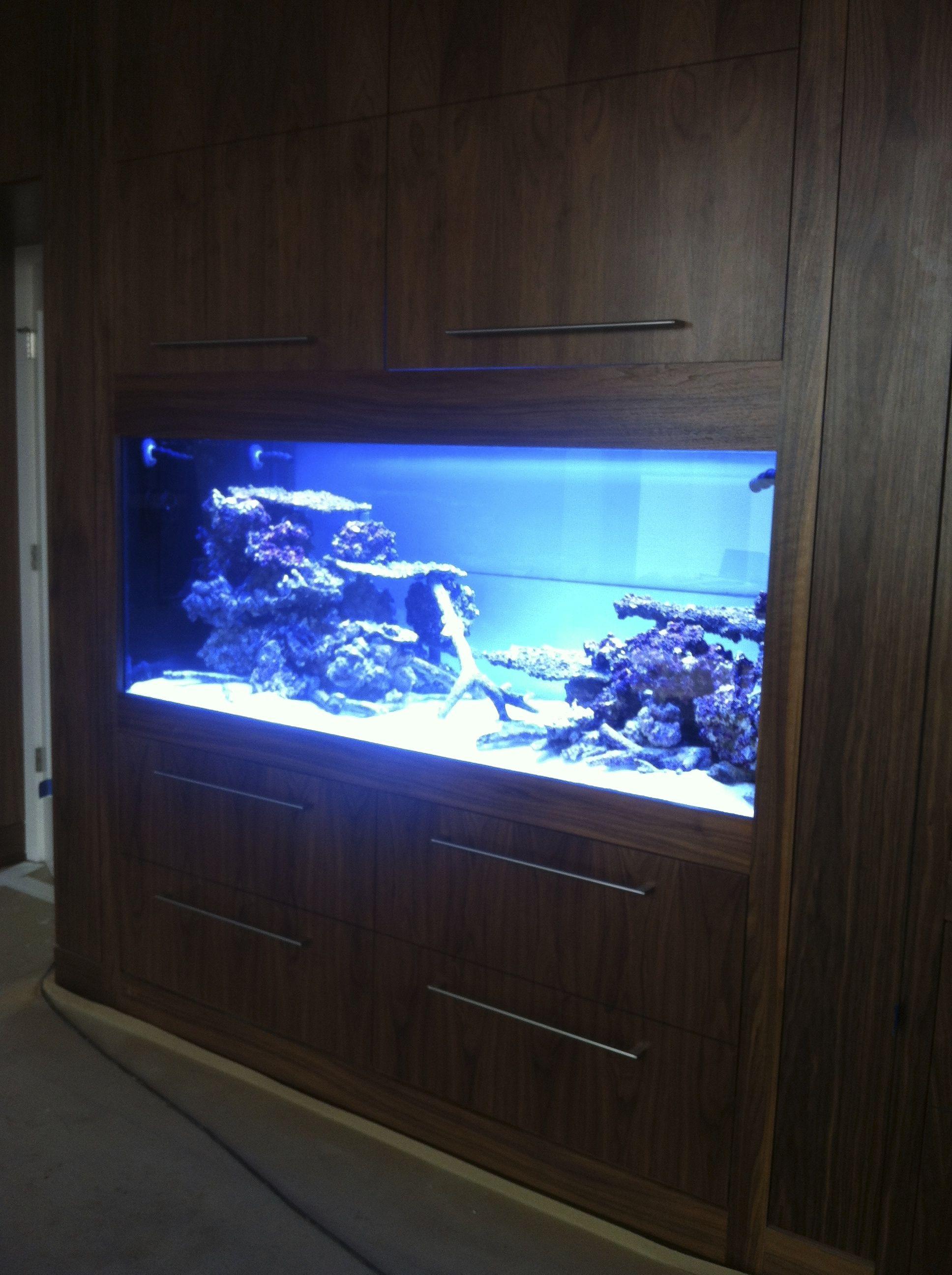 Aquariums 400G Custom Build