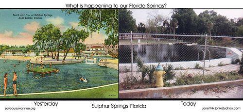 Sulphur Springs Florida