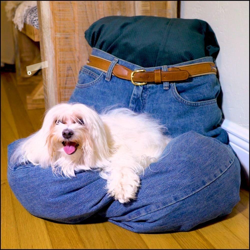 Stretch them, rip them, even make them into a dog bed