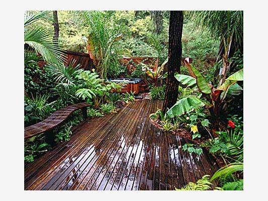 Backyard tropical rain forest home and garden design for Home rain garden design