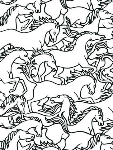 florence broadhurst horses stampede